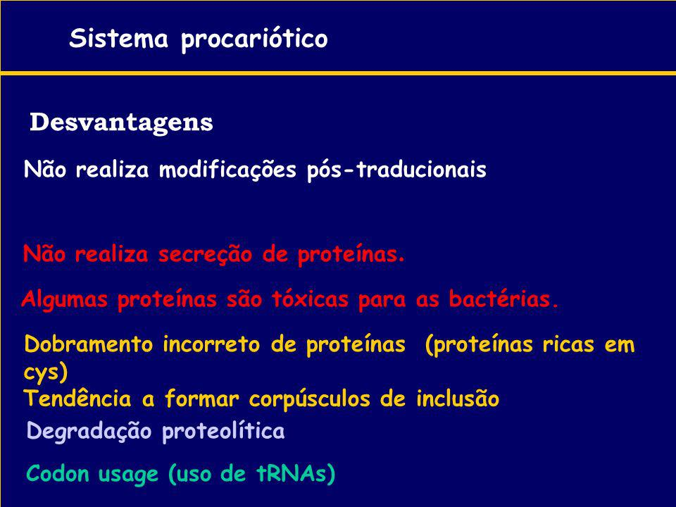 Desvantagens Sistema procariótico Não realiza modificações pós-traducionais - Não realiza secreção de proteínas. Algumas proteínas são tóxicas para as