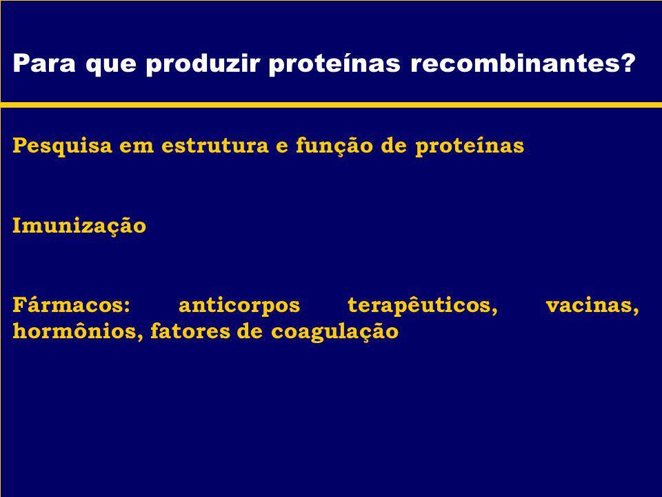 Para que produzir proteínas recombinantes? Pesquisa em estrutura e função de proteínas Imunização Fármacos: anticorpos terapêuticos, vacinas, hormônio