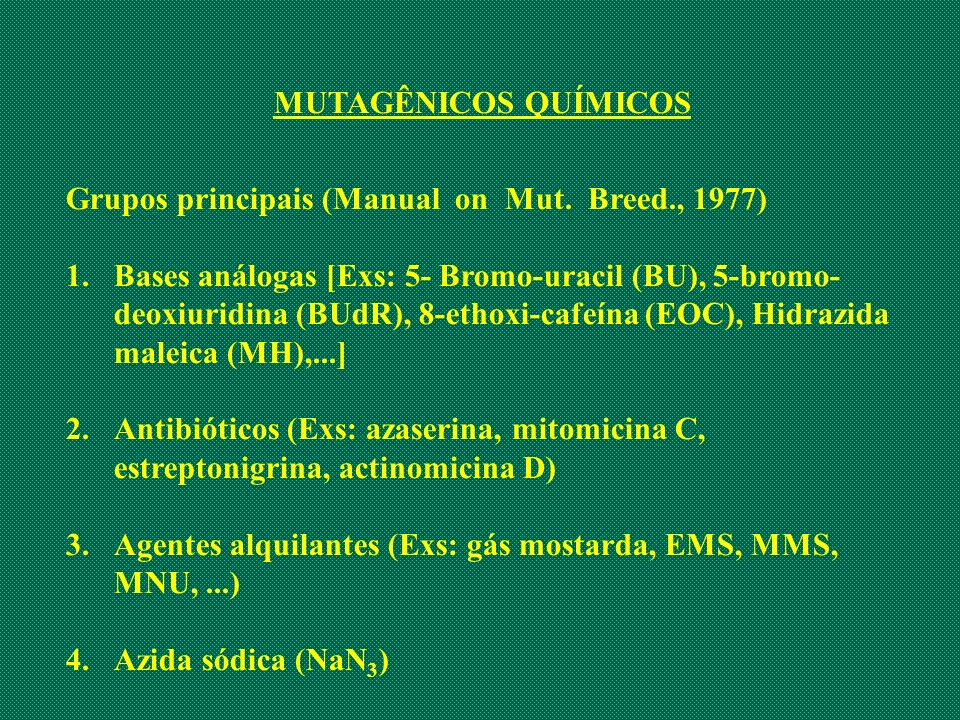 MUTAGÊNICOS QUÍMICOS Grupos principais (Manual on Mut. Breed., 1977) 1.Bases análogas [Exs: 5- Bromo-uracil (BU), 5-bromo- deoxiuridina (BUdR), 8-etho