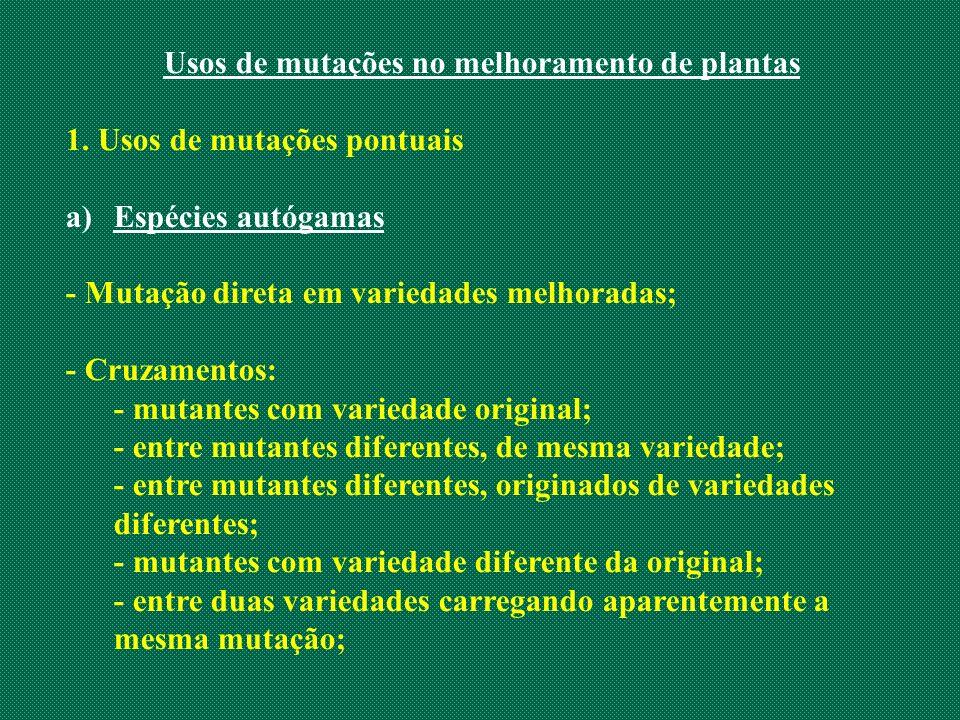 Usos de mutações no melhoramento de plantas 1. Usos de mutações pontuais a)Espécies autógamas - Mutação direta em variedades melhoradas; - Cruzamentos
