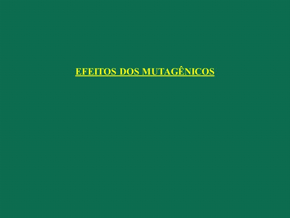 EFEITOS DOS MUTAGÊNICOS