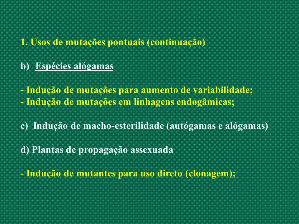 1. Usos de mutações pontuais (continuação) b)Espécies alógamas - Indução de mutações para aumento de variabilidade; - Indução de mutações em linhagens