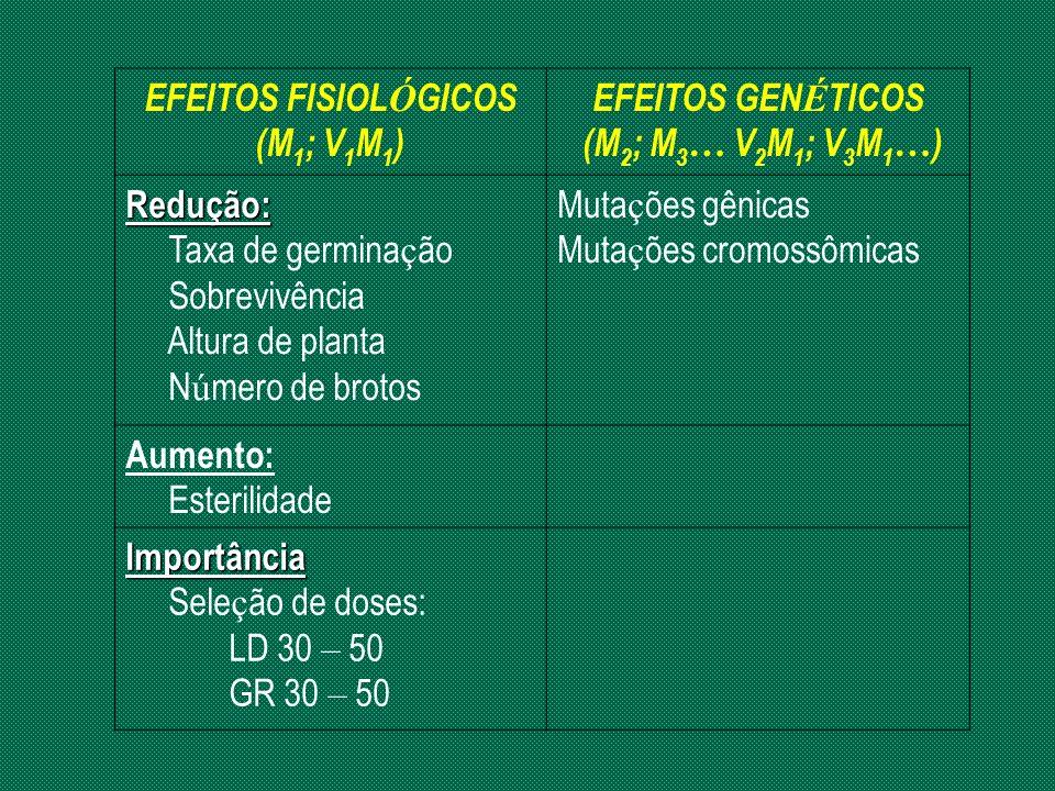 EFEITOS FISIOL Ó GICOS (M 1 ; V 1 M 1 ) EFEITOS GEN É TICOS (M 2 ; M 3 … V 2 M 1 ; V 3 M 1 … ) Redução: Taxa de germina ç ão Sobrevivência Altura de p