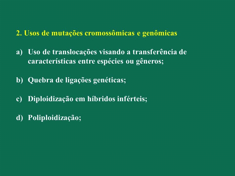 2. Usos de mutações cromossômicas e genômicas a)Uso de translocações visando a transferência de características entre espécies ou gêneros; b)Quebra de