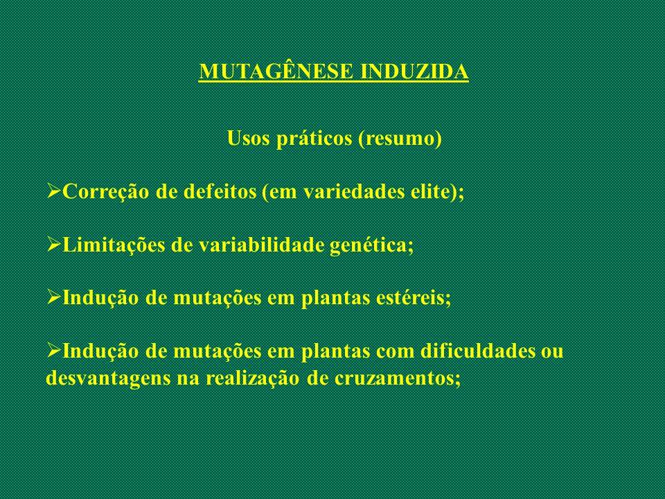 MUTAGÊNESE INDUZIDA Usos práticos (resumo) Correção de defeitos (em variedades elite); Limitações de variabilidade genética; Indução de mutações em pl
