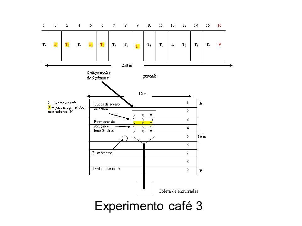 Experimento café 3