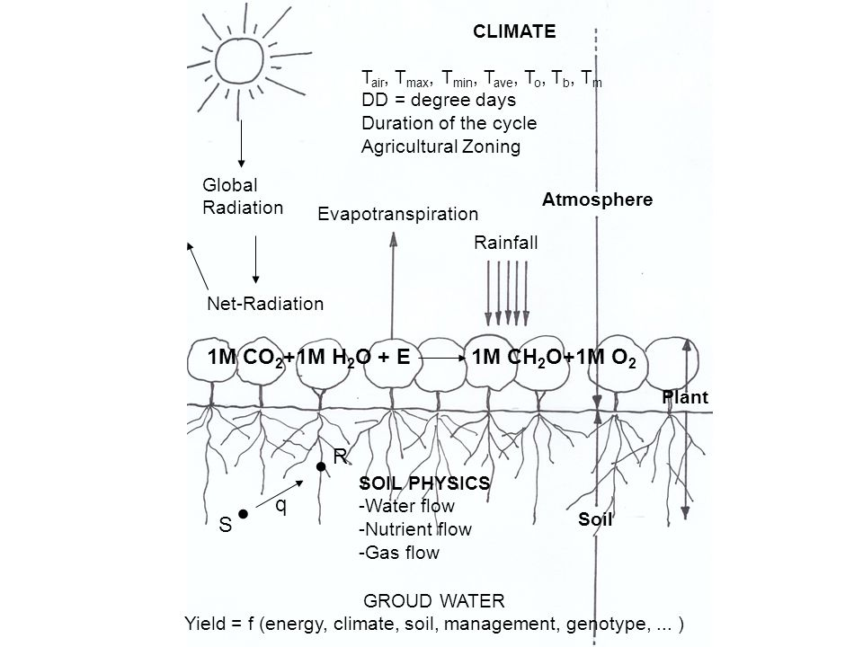 CLIMATE T air, T max, T min, T ave, T o, T b, T m DD = degree days Duration of the cycle Agricultural Zoning Global Radiation Net-Radiation Evapotrans