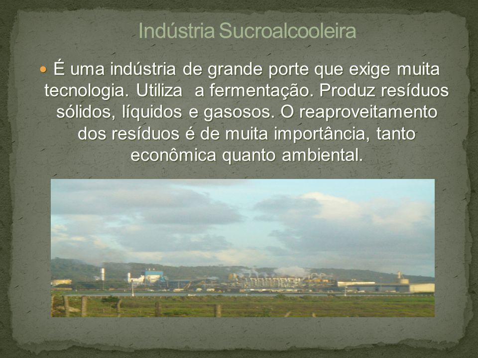 É uma indústria de grande porte que exige muita tecnologia. Utiliza a fermentação. Produz resíduos sólidos, líquidos e gasosos. O reaproveitamento dos