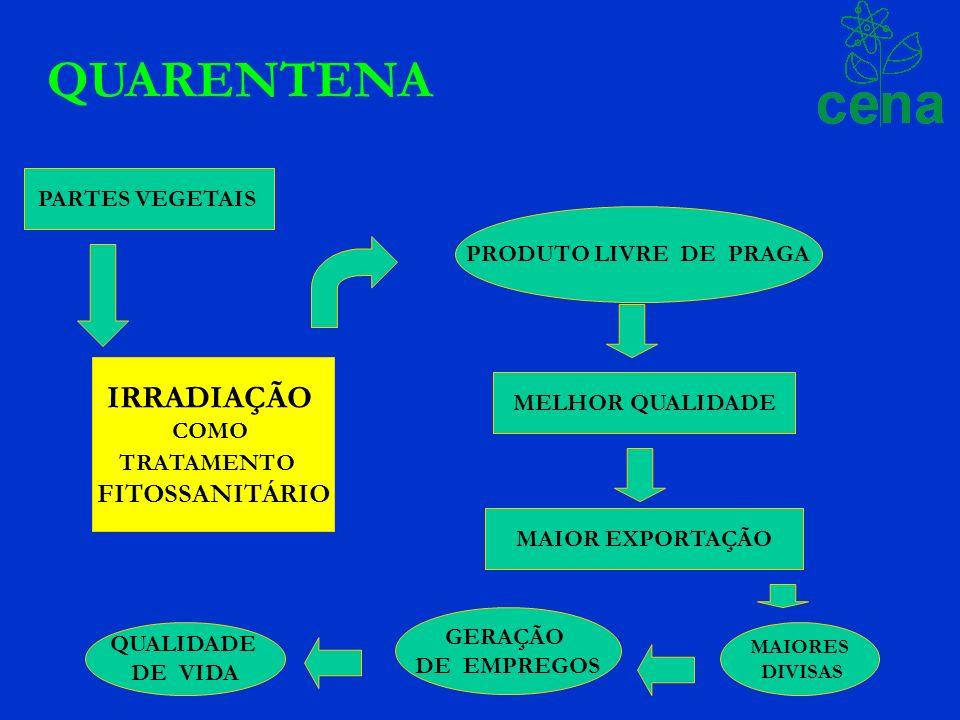 QUARENTENA PARTES VEGETAIS IRRADIAÇÃO COMO TRATAMENTO FITOSSANITÁRIO PRODUTO LIVRE DE PRAGA MAIOR EXPORTAÇÃO MELHOR QUALIDADE MAIORES DIVISAS GERAÇÃO