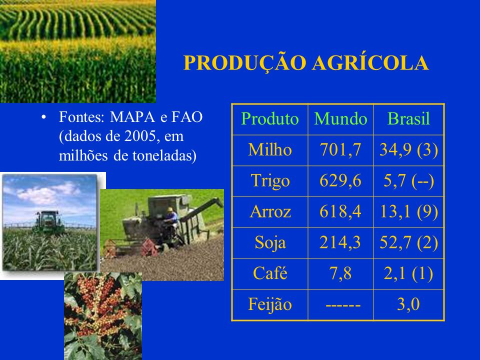 PRODUÇÃO AGRÍCOLA Fontes: MAPA e FAO (dados de 2005, em milhões de toneladas) ProdutoMundoBrasil Milho701,734,9 (3) Trigo629,65,7 (--) Arroz618,413,1