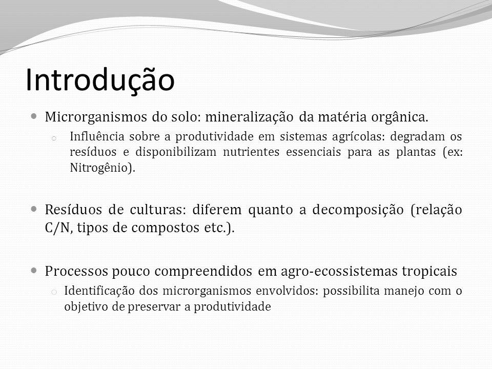 Introdução Microrganismos do solo: mineralização da matéria orgânica. o Influência sobre a produtividade em sistemas agrícolas: degradam os resíduos e
