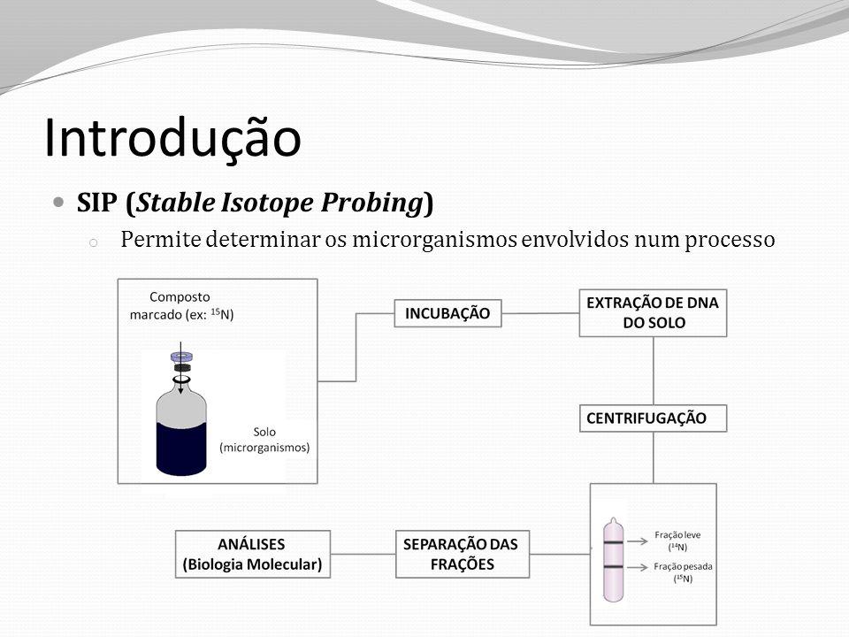 Introdução Gene RNAr 16S: espécies sequências DGGE (Denaturing Gradient Gel Electrophoresis) o Separa sequências diferentes, de acordo com a composição de bases (A, T, C e G) Aumento na concentração de reagentes desnaturantes DGGE Espécie 1Espécie 2Espécie 3 Fração Leve SEQUENCIAMENTO DAS BANDAS Identificação das espécies microbianas Fração Pesada