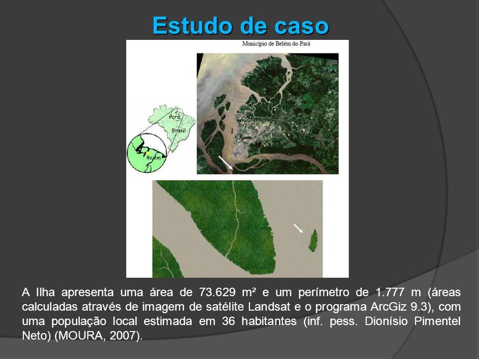 A Ilha apresenta uma área de 73.629 m² e um perímetro de 1.777 m (áreas calculadas através de imagem de satélite Landsat e o programa ArcGiz 9.3), com