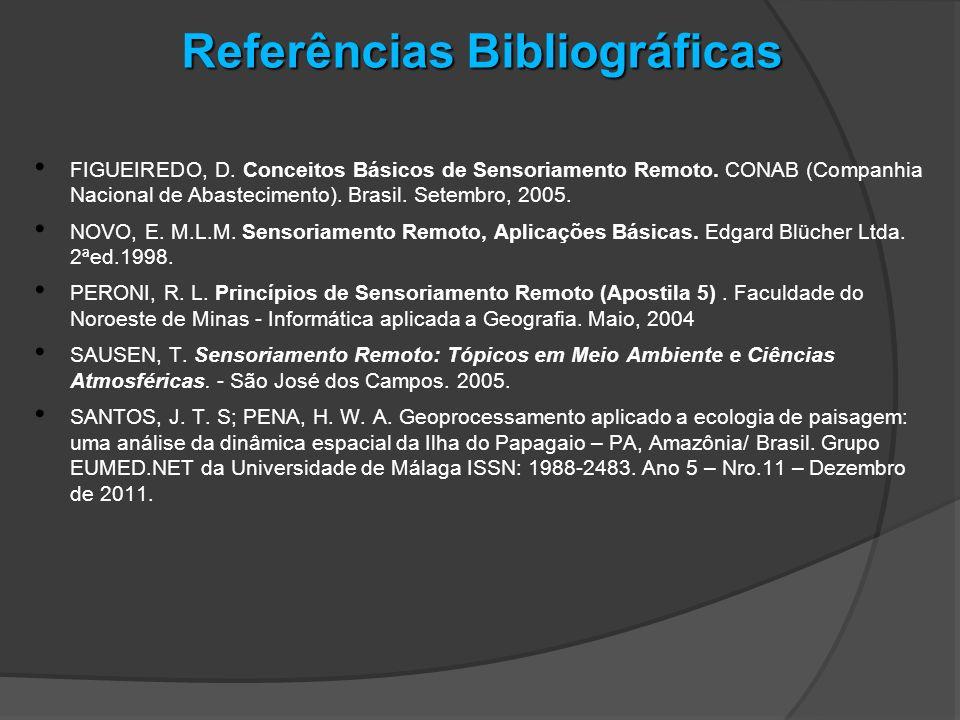 Referências Bibliográficas FIGUEIREDO, D. Conceitos Básicos de Sensoriamento Remoto. CONAB (Companhia Nacional de Abastecimento). Brasil. Setembro, 20