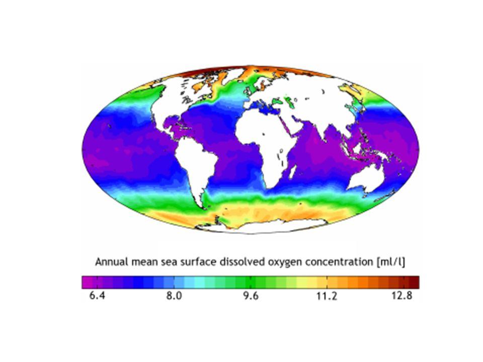A cada temperatura corresponde uma concentração máxima de OD, que é denominada concentração na saturação.