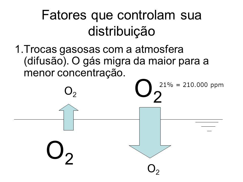 Fatores que controlam sua distribuição 1.Trocas gasosas com a atmosfera (difusão). O gás migra da maior para a menor concentração. O2O2 O2O2 O2O2 O2O2