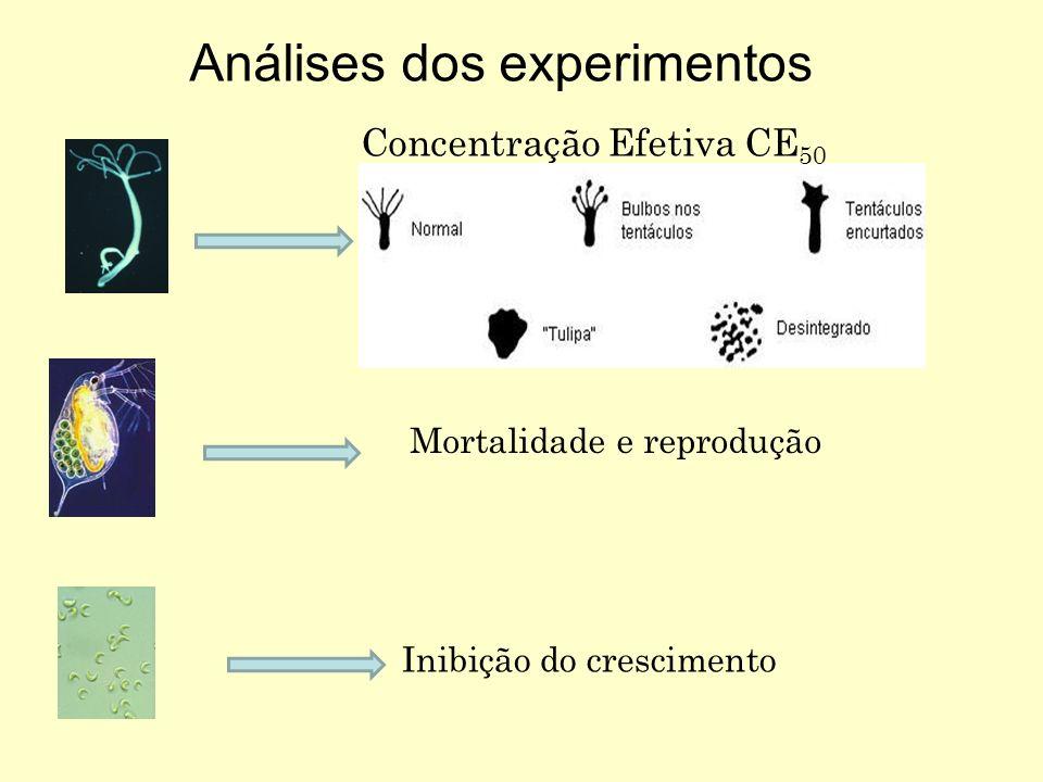 Concentração Efetiva CE 50 Análises dos experimentos Mortalidade e reprodução Inibição do crescimento