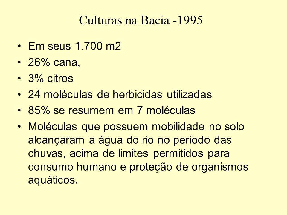 Culturas na Bacia -1995 Em seus 1.700 m2 26% cana, 3% citros 24 moléculas de herbicidas utilizadas 85% se resumem em 7 moléculas Moléculas que possuem