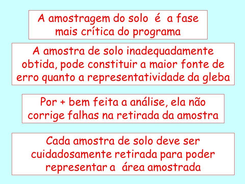 AMOSTRA SIMPLES AMOSTRA COMPOSTA 500 cm 3 (5.10 -8 ) AMOSTRA DE TRABALHO 10 cm 3 (1.10 -9 ) 5 ha (0-20 cm) 10.000.000.000 cm 3
