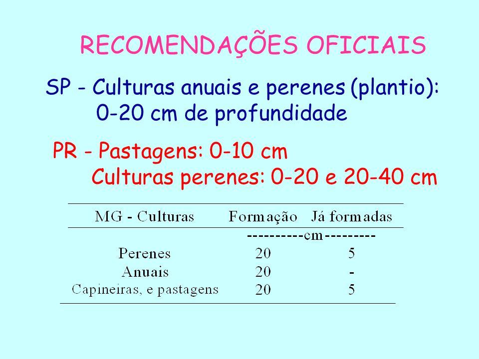 EMBALAGEM DA AMOSTRA DE SOLO