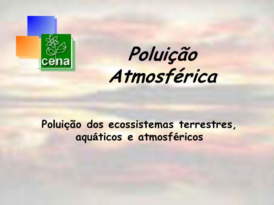 Poluição Atmosférica Polui ç ão dos ecossistemas terrestres, aqu á ticos e atmosf é ricos