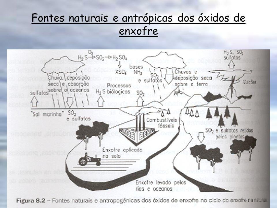 Compostos Nitrogenados Na atmosfera os compostos nitrogenados apresentam-se nas seguintes formas: N 2 O, NO, NO 2, NH 3, sais de NO 3 -, NO 2 - e NH 4.