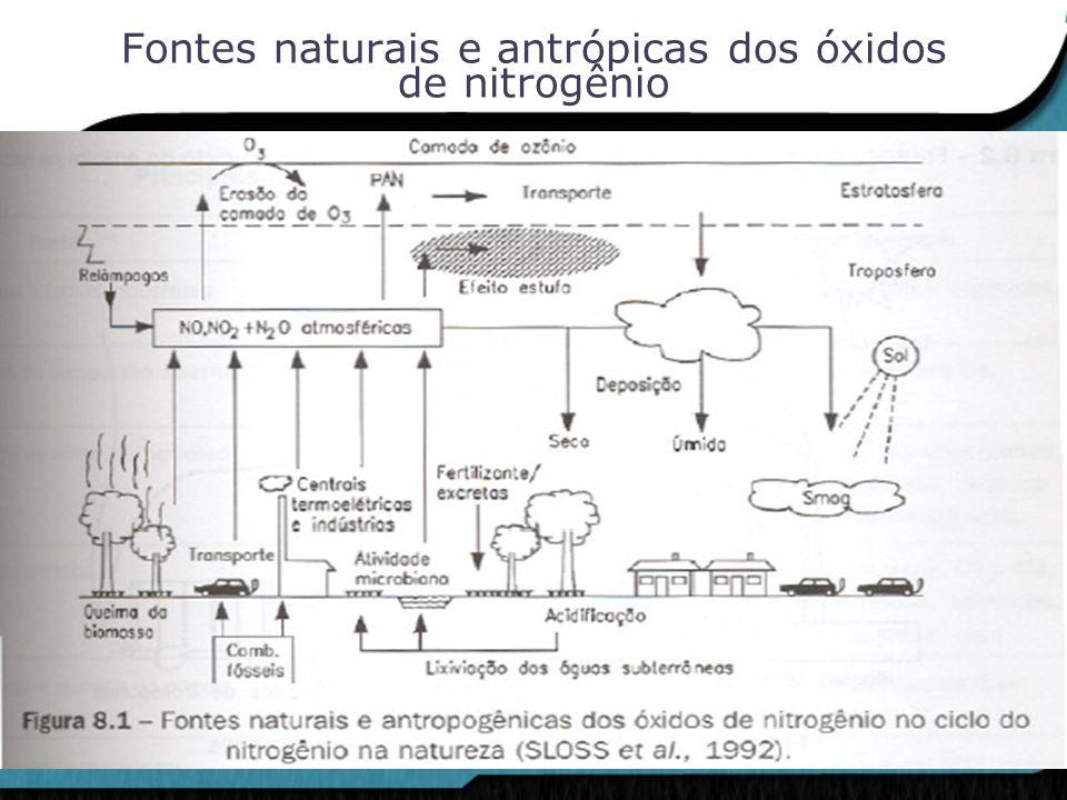 Fontes naturais e antrópicas dos óxidos de nitrogênio