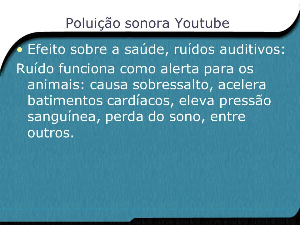 Poluição sonora Youtube Efeito sobre a saúde, ruídos auditivos: Ruído funciona como alerta para os animais: causa sobressalto, acelera batimentos card