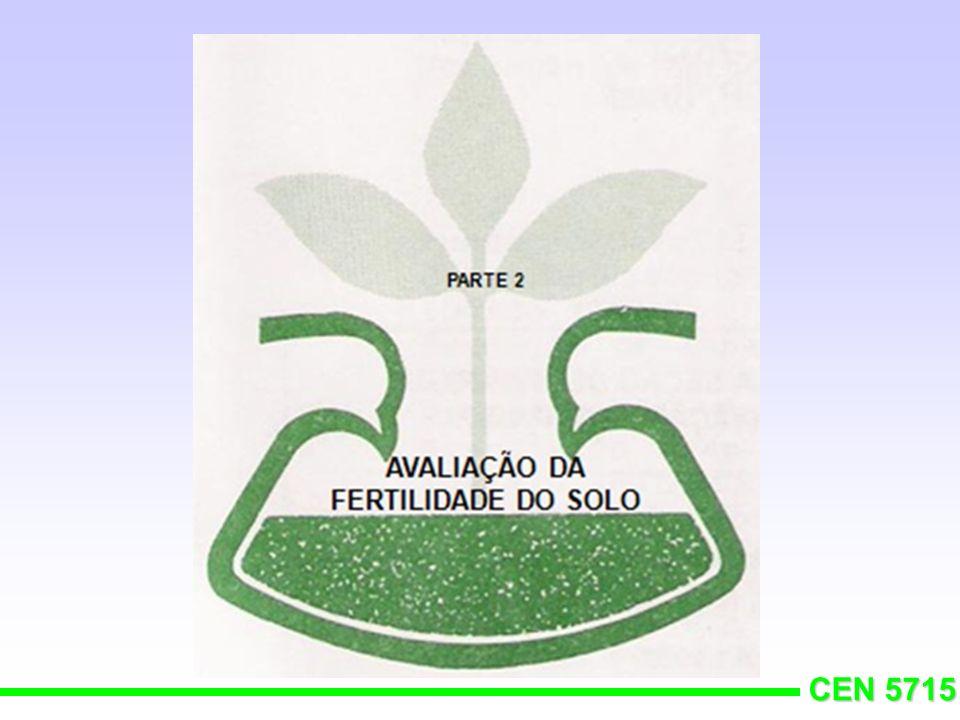 CEN 5715 GOIABEIRA
