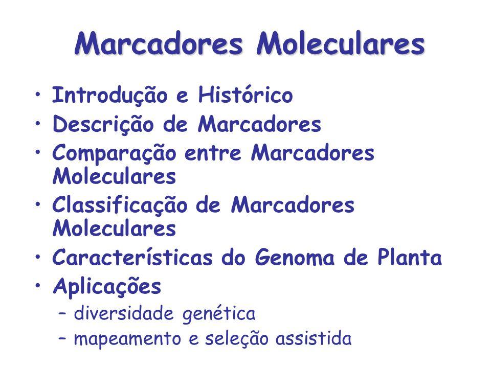 Microssatélites STMS ou SSRs –Seqüências curtas (1 a 6 bases) repetidas em tandem –Presentes em procariotos e eucariotos –Presentes em regiões codificantes e não codificantes –Maioria das repetições são dinucleotídeos (AC) n (AG) n (AT) n