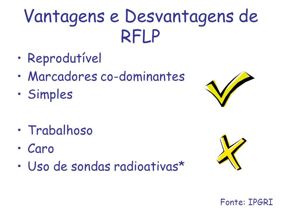 Vantagens e Desvantagens de RFLP Reprodutível Marcadores co-dominantes Simples Trabalhoso Caro Uso de sondas radioativas* Fonte: IPGRI