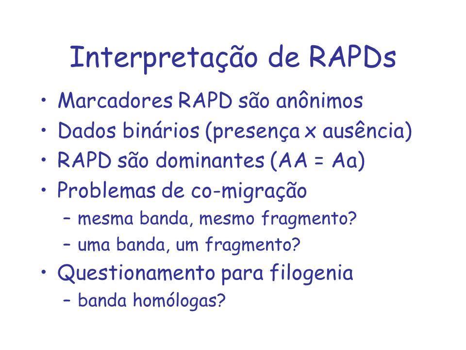 Interpretação de RAPDs Marcadores RAPD são anônimos Dados binários (presença x ausência) RAPD são dominantes (AA = Aa) Problemas de co-migração –mesma