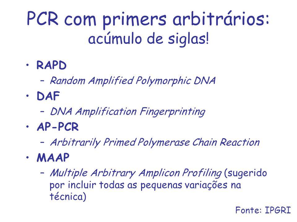 PCR com primers arbitrários: acúmulo de siglas! RAPD –Random Amplified Polymorphic DNA DAF –DNA Amplification Fingerprinting AP-PCR –Arbitrarily Prime