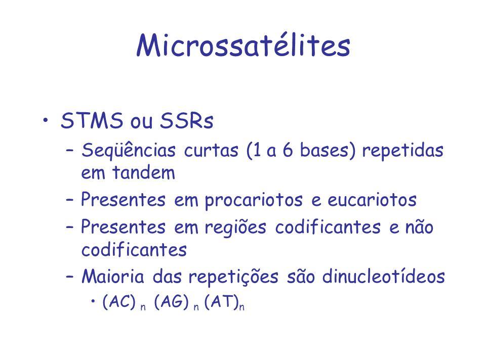 Microssatélites STMS ou SSRs –Seqüências curtas (1 a 6 bases) repetidas em tandem –Presentes em procariotos e eucariotos –Presentes em regiões codific