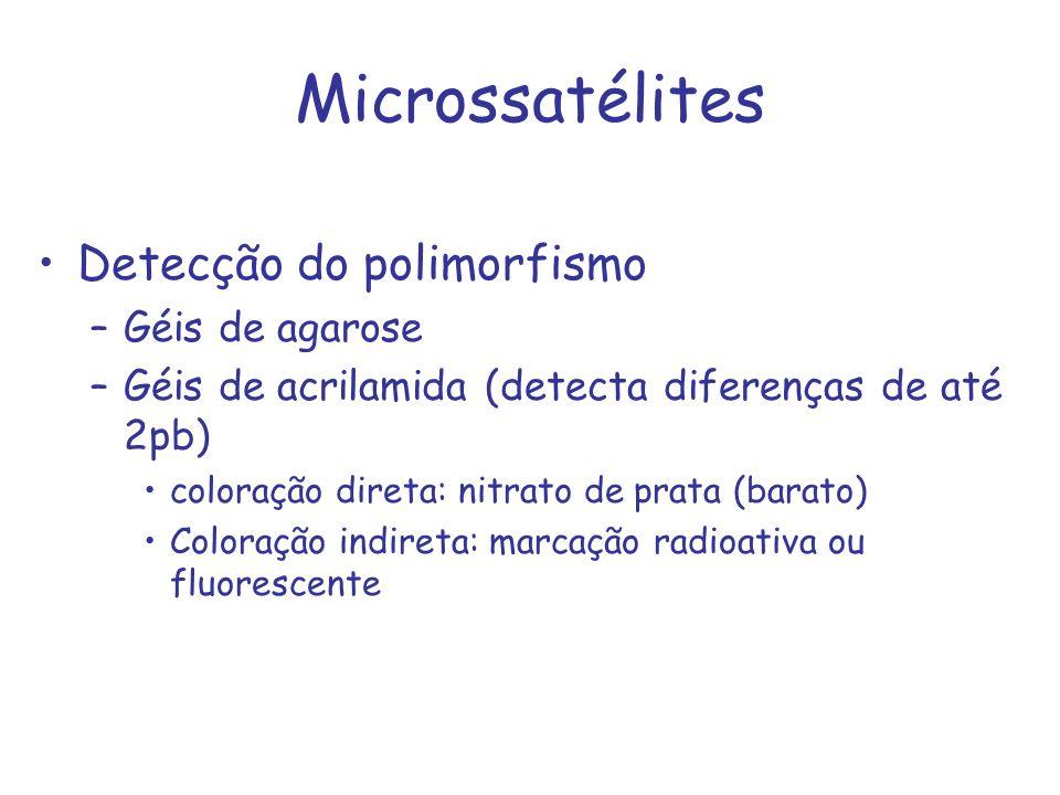 Detecção do polimorfismo –Géis de agarose –Géis de acrilamida (detecta diferenças de até 2pb) coloração direta: nitrato de prata (barato) Coloração in