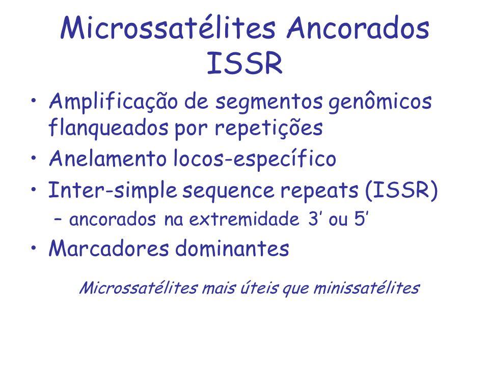 Microssatélites Ancorados ISSR Amplificação de segmentos genômicos flanqueados por repetições Anelamento locos-específico Inter-simple sequence repeat