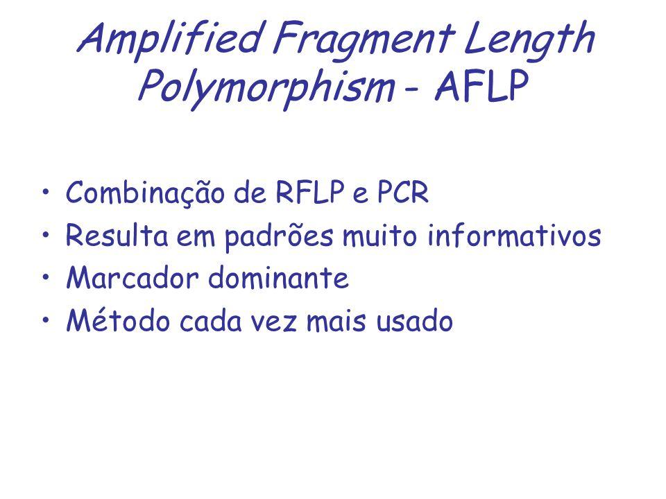 Amplified Fragment Length Polymorphism - AFLP Combinação de RFLP e PCR Resulta em padrões muito informativos Marcador dominante Método cada vez mais u