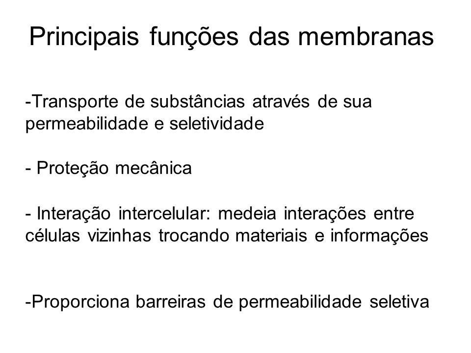 Principais funções das membranas -Transporte de substâncias através de sua permeabilidade e seletividade - Proteção mecânica - Interação intercelular: