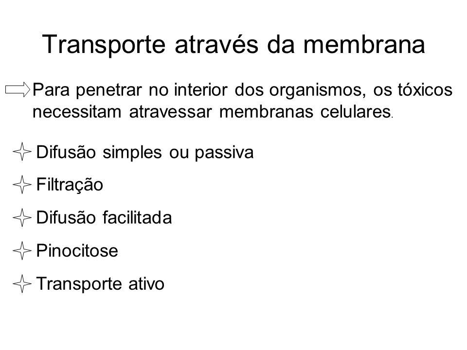 Transporte através da membrana Para penetrar no interior dos organismos, os tóxicos necessitam atravessar membranas celulares. Difusão simples ou pass