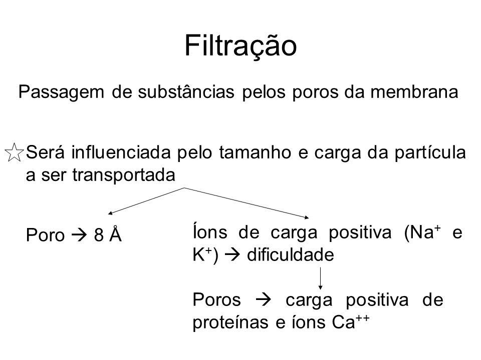 Filtração Passagem de substâncias pelos poros da membrana Será influenciada pelo tamanho e carga da partícula a ser transportada Poro 8 Å Íons de carg