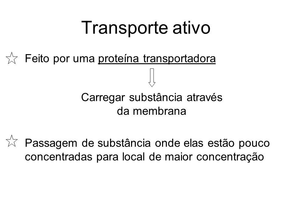Transporte ativo Feito por uma proteína transportadora Carregar substância através da membrana Passagem de substância onde elas estão pouco concentrad