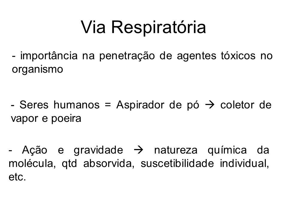 Via Respiratória - importância na penetração de agentes tóxicos no organismo - Ação e gravidade natureza química da molécula, qtd absorvida, suscetibi