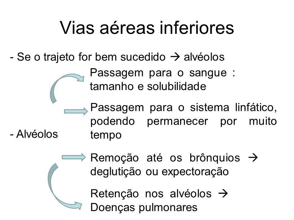 Vias aéreas inferiores - Se o trajeto for bem sucedido alvéolos - Alvéolos Passagem para o sangue : tamanho e solubilidade Passagem para o sistema lin