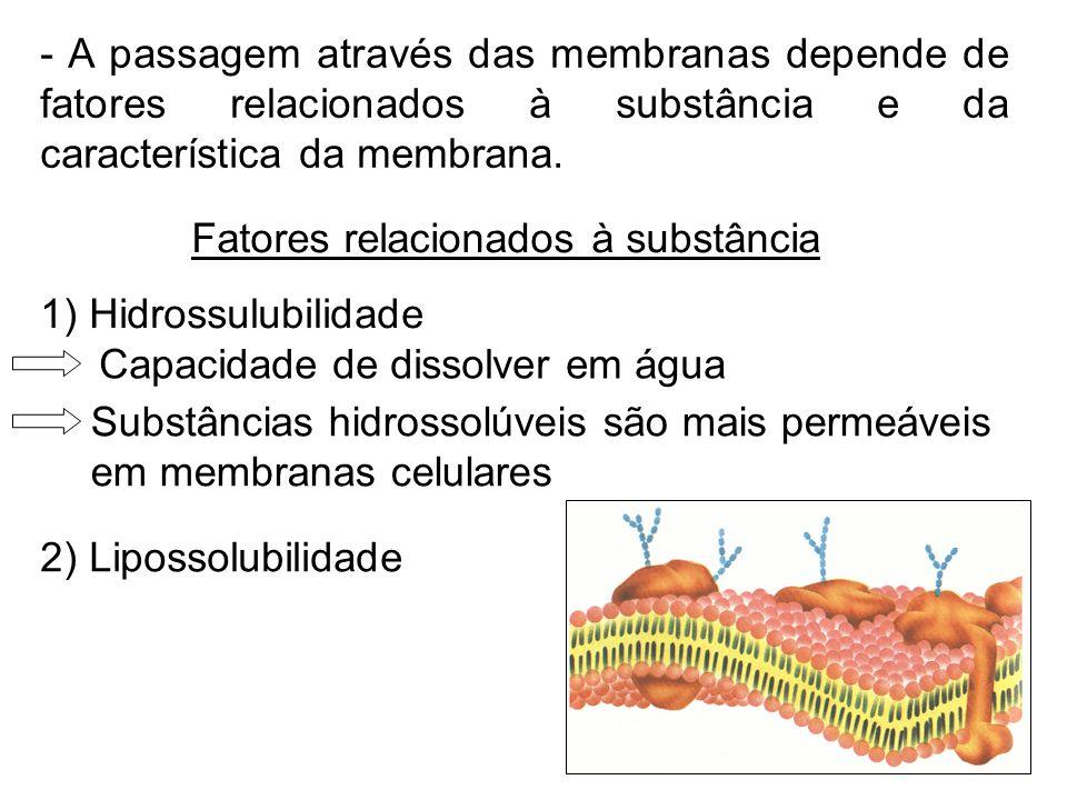 - A passagem através das membranas depende de fatores relacionados à substância e da característica da membrana. Fatores relacionados à substância 1)