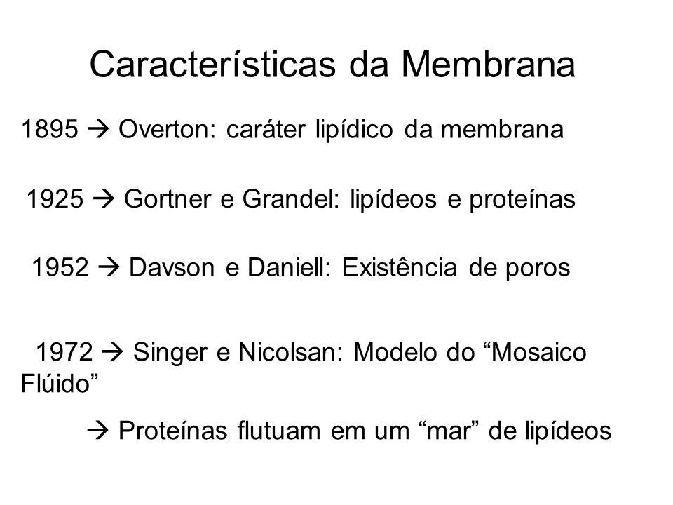 Características da Membrana 1895 Overton: caráter lipídico da membrana 1925 Gortner e Grandel: lipídeos e proteínas 1952 Davson e Daniell: Existência