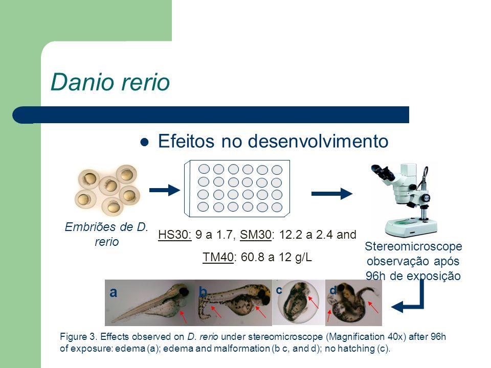 Danio rerio Efeitos no desenvolvimento ab c d Embriões de D. rerio HS30: 9 a 1.7, SM30: 12.2 a 2.4 and TM40: 60.8 a 12 g/L Stereomicroscope observação