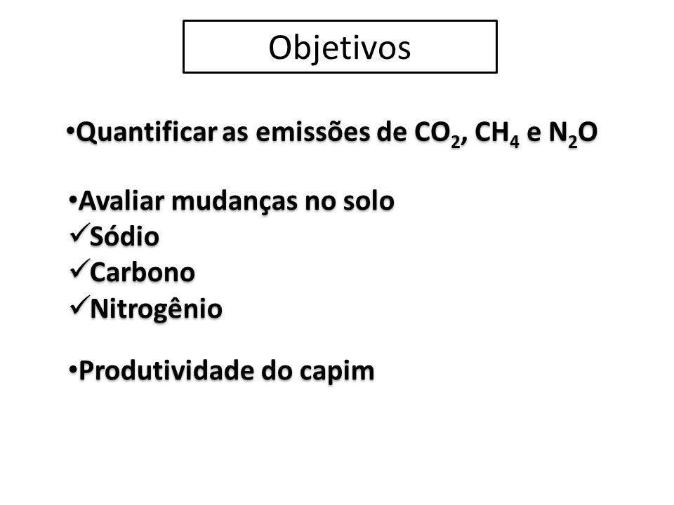 Objetivos Quantificar as emissões de CO 2, CH 4 e N 2 O Avaliar mudanças no solo Sódio Carbono Nitrogênio Avaliar mudanças no solo Sódio Carbono Nitro