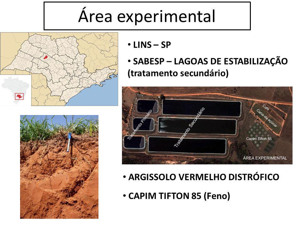 Área experimental LINS – SP SABESP – LAGOAS DE ESTABILIZAÇÃO (tratamento secundário) ARGISSOLO VERMELHO DISTRÓFICO CAPIM TIFTON 85 (Feno)