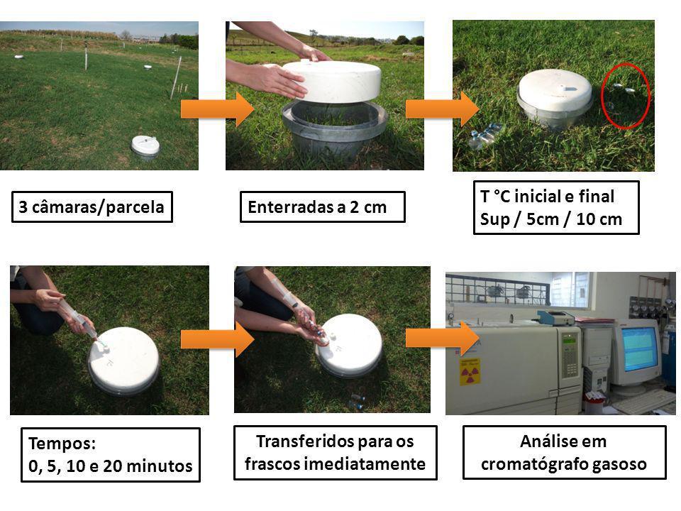 Enterradas a 2 cm T °C inicial e final Sup / 5cm / 10 cm Tempos: 0, 5, 10 e 20 minutos 3 câmaras/parcela Transferidos para os frascos imediatamente An