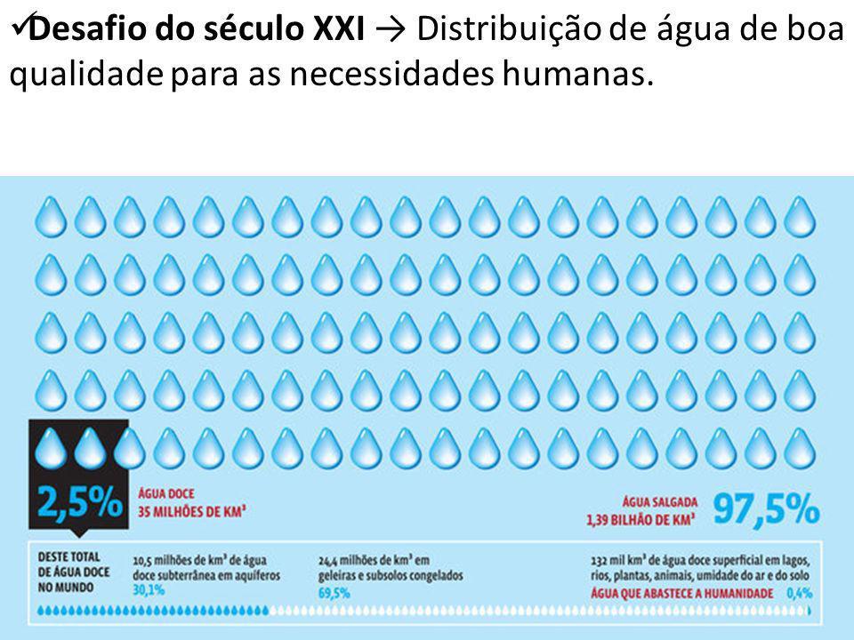 Desafio do século XXI Distribuição de água de boa qualidade para as necessidades humanas.